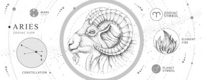 Bild Modern magic witchcraft card with astrology Aries zodiac sign. Realistic hand drawing ram or mouflon head. Zodiac characteristic
