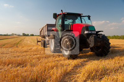 Moderne rote Traktor auf dem Gebiet der Landwirtschaft auf der sonnigen Sommertag