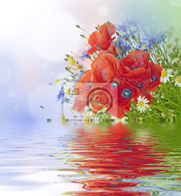 Bild Mohn, Margeriten, Kornblumen in bouquet