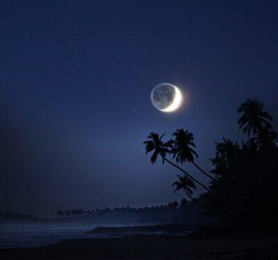 Bild Mondlicht