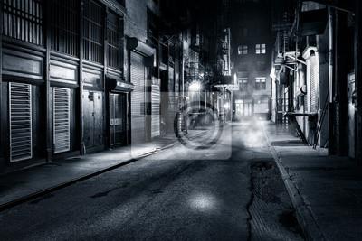 Bild Moody monochrome Ansicht der Cortlandt Alley bei Nacht, in Chinatown, New York City