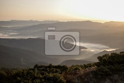 Bild morning fog in the mountains