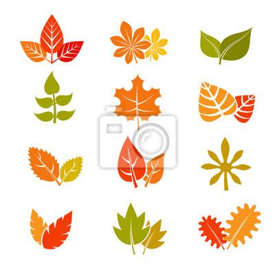 Multicolor Herbst Blatter Flachen Vektor Icons Herbst Feuille