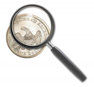 Münzen-Dollar und Lupe
