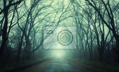 Mysteriösen dunklen Herbstwald in grünen Nebel mit Straße, Bäume