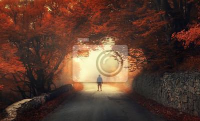 Mystical Herbst roten Wald mit Silhouette eines Mannes auf der Straße im Nebel. Herbstwälder. Landschaft mit Mann, Bäume, Straße, orange und rotes Laub, und gelben Nebel. Reise. Herbst Hintergrund. Ma