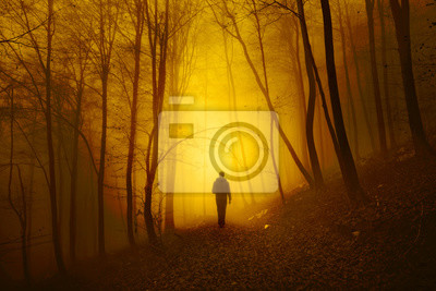 Mystical light in foggy forest with a walking man. Yellow red color tone used.