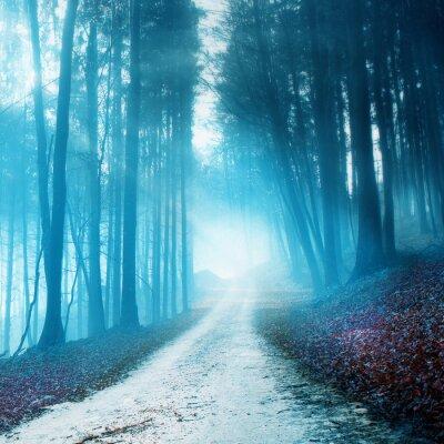 Bild Mystical verschwommen Waldweg