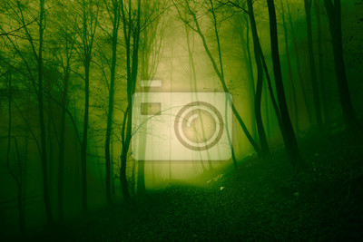 Mystical yellow green foggy forest
