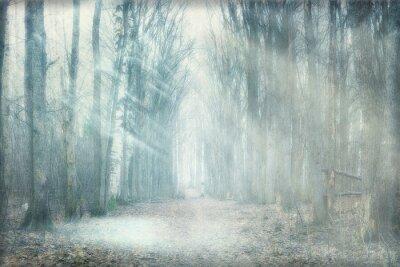 Bild mystischen Wald Nebel