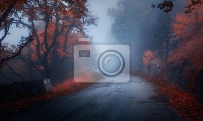 Mystischer Herbstwald mit Straße im Nebel. Fall nebligen Wäldern. Bunte Landschaft mit Bäumen, ländliche Straße, orange und rotes Laub, blauer Nebel. Magische Straße. Herbst Hintergrund. Magischer dun