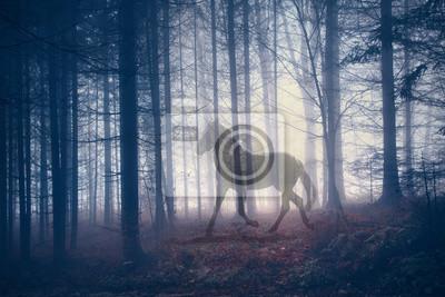 Mystisches Pferd in der Fantasie dunkle Fee Nebelwald Landschaft. Abstraktes Einhorn im magischen Wald. Doppelte Belichtungsmethode verwendet.