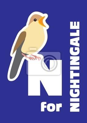 N für die Nachtigall, ein Tier-Alphabet für Kinder