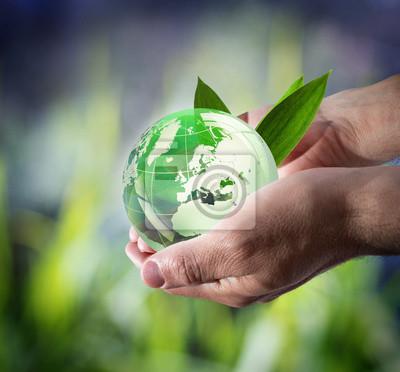 nachhaltige Entwicklung weltweit