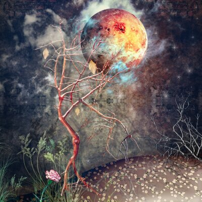Bild Nacht mit Baum und Mond