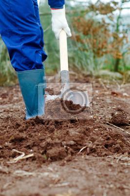 Nahaufnahme von einem Mann graben Boden