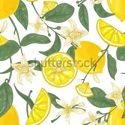 Bild Nahtloses Muster mit den frischen saftigen Zitronen, ganz und in Stücke, Blumen und Blätter auf weißem Hintergrund geschnitten. Hintergrund mit Zitrusfrüchten. Botanische Vektorillustration in der ant
