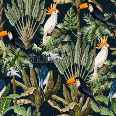 Bild Nahtloses Muster mit exotischen Bäumen und wildem Vogel, Papageien und Tukanen.