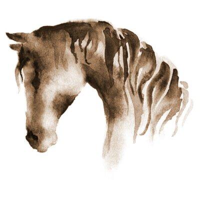 Bild Nasse Aquarell Pferd Kopf. Hand bemalte braune Pferd auf weiß.