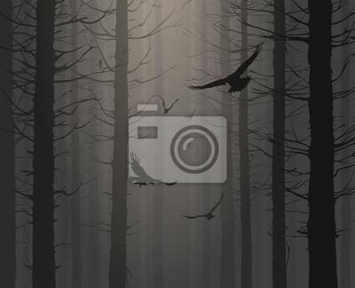 Bild Natürlichen Hintergrund mit Silhouetten von Kiefern und fliegenden Vögeln
