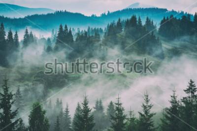 Bild Nebelhaftes Karpatengebirgstal nach dem Regen. Grunge Vintage Stilisierung.