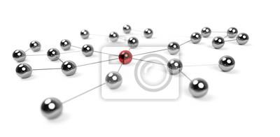 Bild Netzwerk