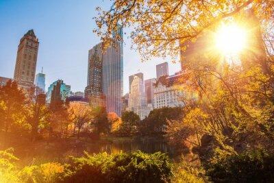 Bild New York Central Park entfernt