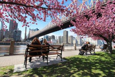 Bild New York City / Roosevelt Island