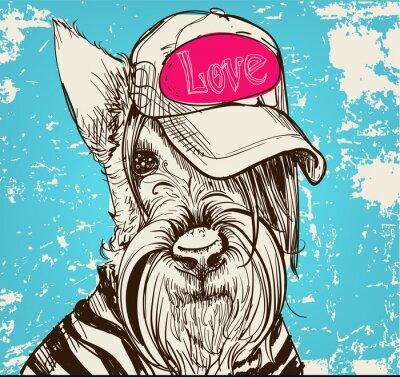 Bild Niedlichen Porträt eines Scottish Terrier