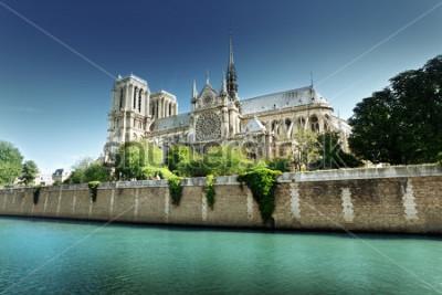 Bild Notre Dame Paris, Frankreich