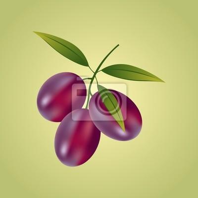 Olive & Grape