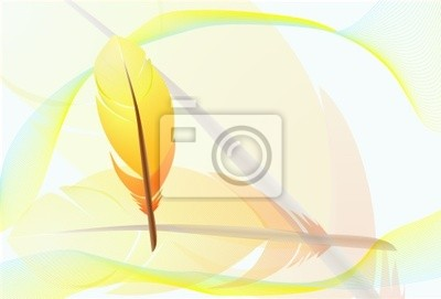 Orange Federn