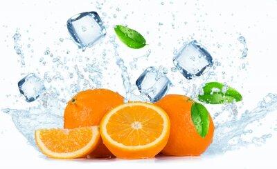 Bild Orangen mit Spritzwasserschutz