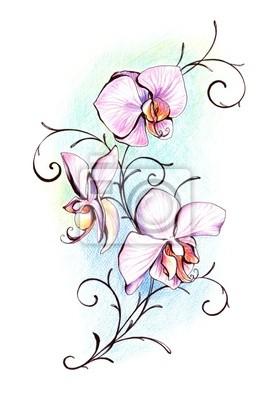 Orchid Hand bemalt.