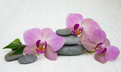 Bild Orchideen und Massagesteine