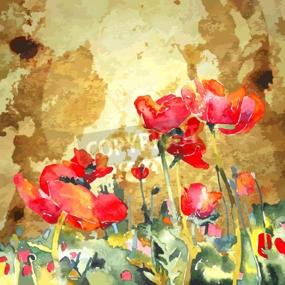 Bild original watercolor poppy flower in gold background