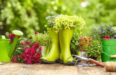 Bild Outdoor gardening tools on old wood table