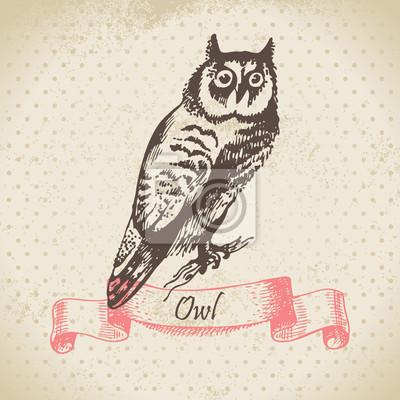 Owl Vogel, von Hand gezeichnete Illustration