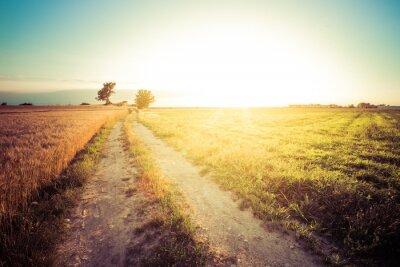 Bild Paesaggio di campagna e campi di grano al tramonto