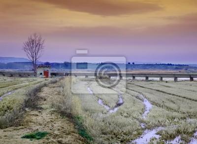 paisaje irreal con Casita