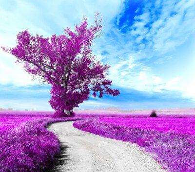 Bild Paisaje surrealista. Arbol y camino entre los campos
