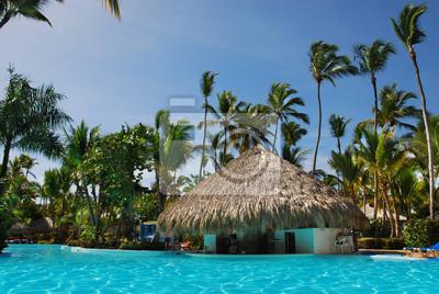 Palm und Schwimmbad