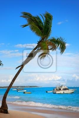 Palme und exotischen Strand in der Dominikanischen Republik, Punta Cana