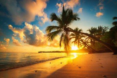 Palmen und tropischen Strand in Punta Cana, Dominikanische Republik