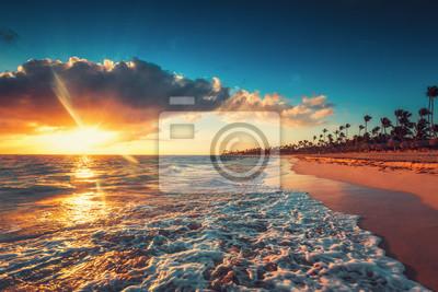 Palmen und tropischer Inselstrand in Punta Cana, Dominikanische Republik