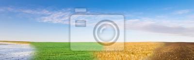 Bild Panoramic collage of four season field under blue sky