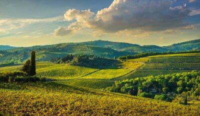 Bild Panzano in Chianti vineyard and panorama at sunset. Tuscany, Italy