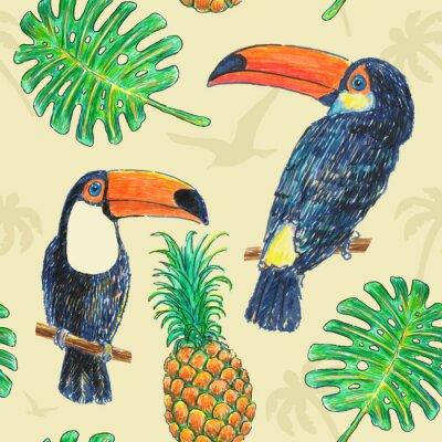 Bild Pattern Toucan Zeichnung Marker