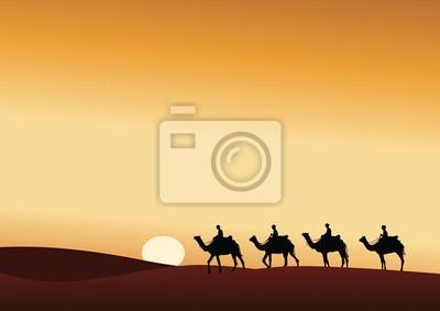 Bild Paysage_Desert_Dromadaire