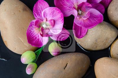 Bild Pebbles und lila Blumen